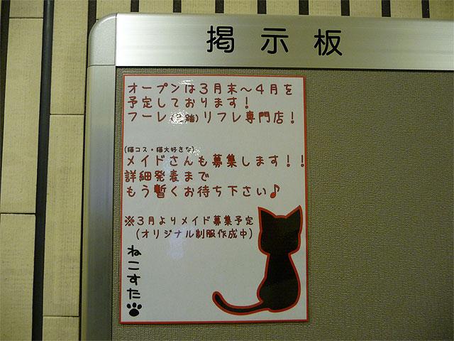 猫メイドリフレ?「ねこすた」のオープンは3月下旬頃か