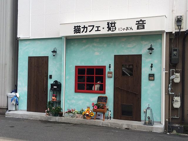 日本橋東に猫のいる喫茶店「猫音」がオープン