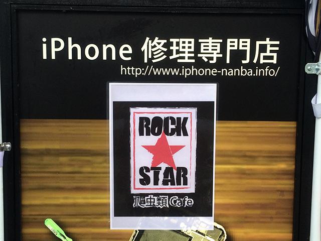 日本橋西に爬虫類カフェ「ROCK STAR」がオープン