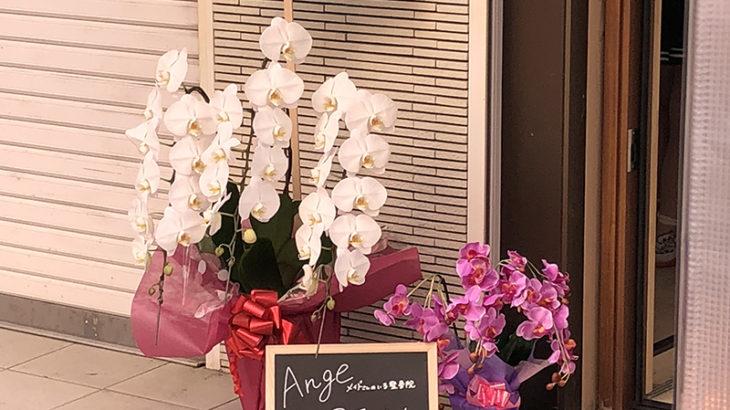 日本橋4丁目にメイドさんのいる整骨院「アンジュ」がオープン