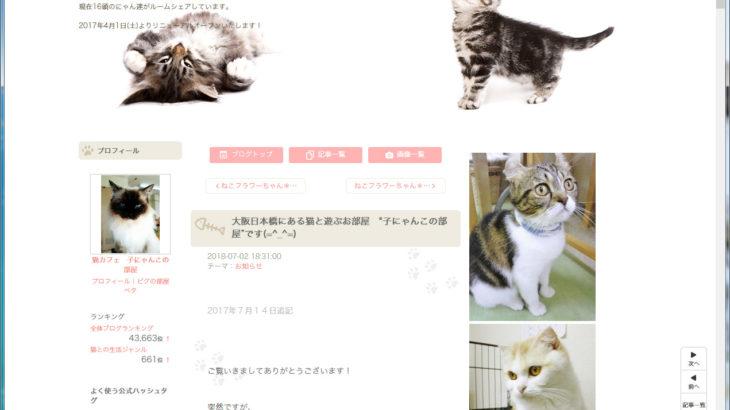 日本橋西の猫カフェ「子にゃんこの部屋」は閉店