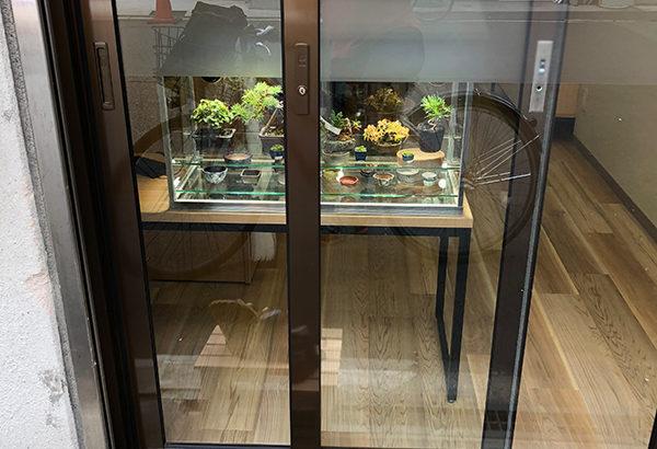 日本橋4丁目に盆栽専門店「敷島報松園」がオープン