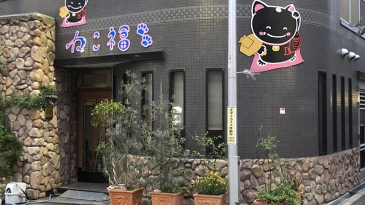 日本橋4丁目にたこやき居酒屋「ねこ福」がオープン準備中