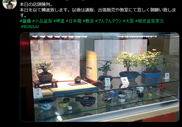 日本橋4丁目の盆栽専門店「敷島報松園」は店舗営業を終了